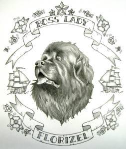 Newfoundland Dog. Graphite on paper.
